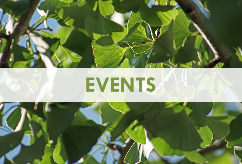 Events at SAAJA